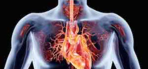 Panikattacken gefährlich für das Herz?