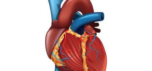 Herzinfarkt durch Hypochondrie?